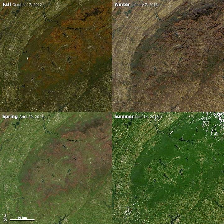 NASA images courtesy LANCE/EOSDIS MODIS Rapid Response Team at NASA GSFC. Caption by Holli Riebeek.
