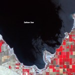 Shrinking Shoreline of the Salton Sea