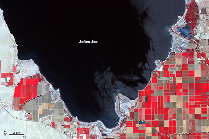 Salton Sea as seen by ASTER