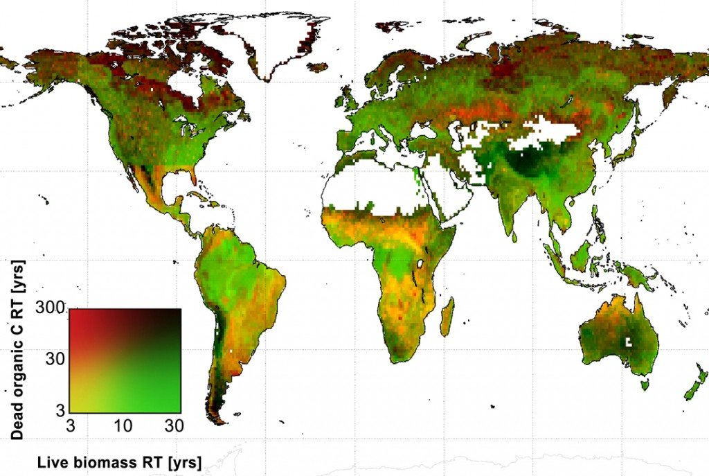 Global map of the average amount of time that live biomass carbon and dead organic carbon spend in carbon reservoirs around the world, in years. Credit: A. Anthony Bloom