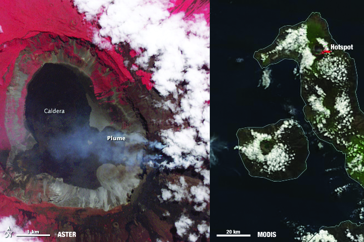 Images of Wolf volcano on June 11, 2016. Image on left is from ASTER, showing Wolf Volcano in great detail. The image on the right is from MODIS. The red mark indicates a temperature anomaly or hot spot. Image Credit: Aster image from NASA Earth Observatory by Jesse Allen, using data from NASA/GSFC/METI/ERSDAC/JAROS, and U.S./Japan ASTER Science Team. MODIS image from NASA Worldview.